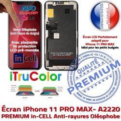 Apple iPhone SmartPhone Écran PREMIUM HD LCD inCELL Tactile Vitre Retina Verre A2220 Affichage Réparation Tone Multi-Touch True