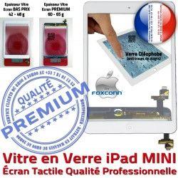 Tactile Caméra iPadMINI Home Oléophobe Monté Fixation iPad A1454 Vitre Filtre Réparation A1432 A1455 Adhésif Ecran Bouton Nappe Blanc Tablette Verre MINI