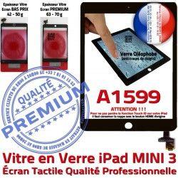 Nappe iPad Oléophobe Verre Adhésif Réparation Caméra Tablette Mini3 Vitre Fixation Tactile Home A1599 Filtre Monté Bouton Noir Ecran