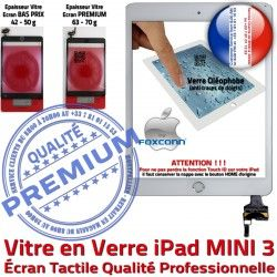 Ecran Vitre 3 Filtre Tablette Oléophobe iPad Home Nappe A1600 Blanc Caméra Mini3 Adhésif Réparation MINI A1599 Tactile Monté Fixation Bouton Verre