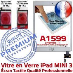 Nappe Ecran Oléophobe iPad Caméra Mini3 A1599 Verre Fixation Réparation Filtre Adhésif Tactile Bouton Blanc Tablette PREMIUM Vitre